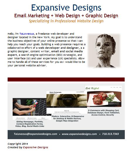 Expansive Designs Marketing Campaign